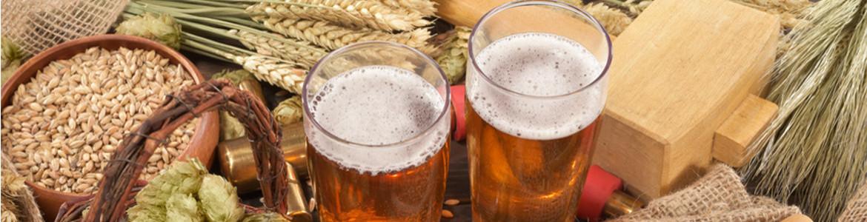 Zwei volle Bier Gläser auf einem Tisch angerichtet mit getrockneten Getreide-Ähren und geernteten Körnern in einer Tonschale und einem Dreschpflegel.